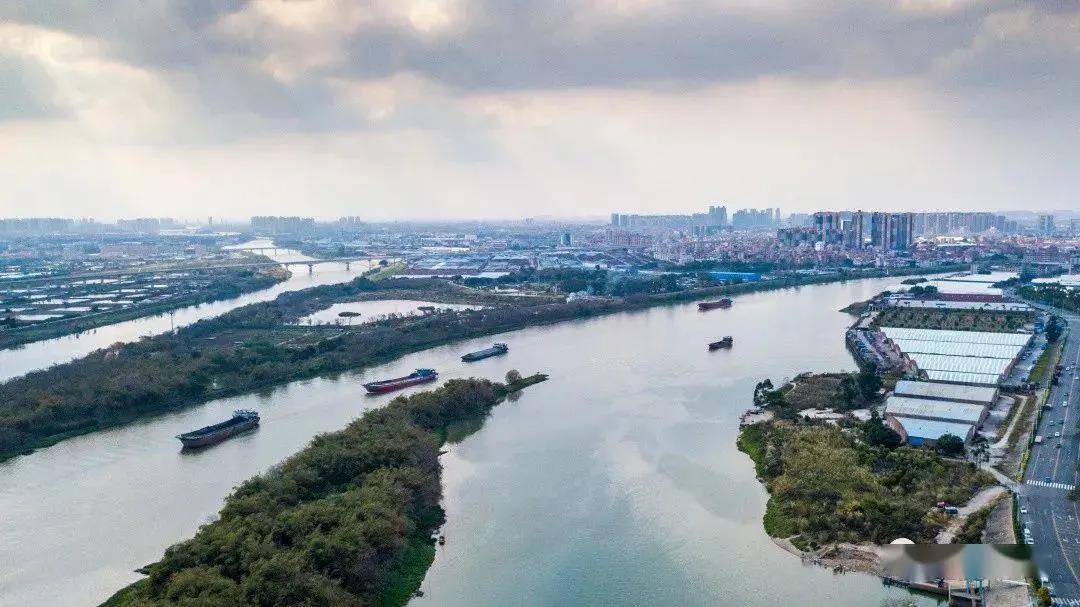 东平水道特大桥BIM设计及应用